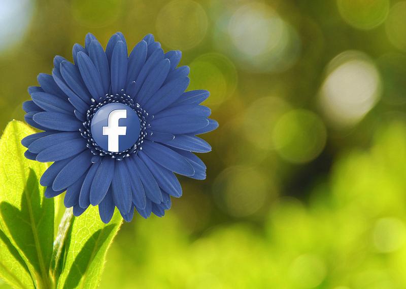 Groeien en bloeien met Facebook