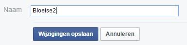 Facebook paginatitel veranderen met minder dan 200 likes