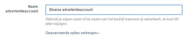 Facebook Enter Account Information for Advertising