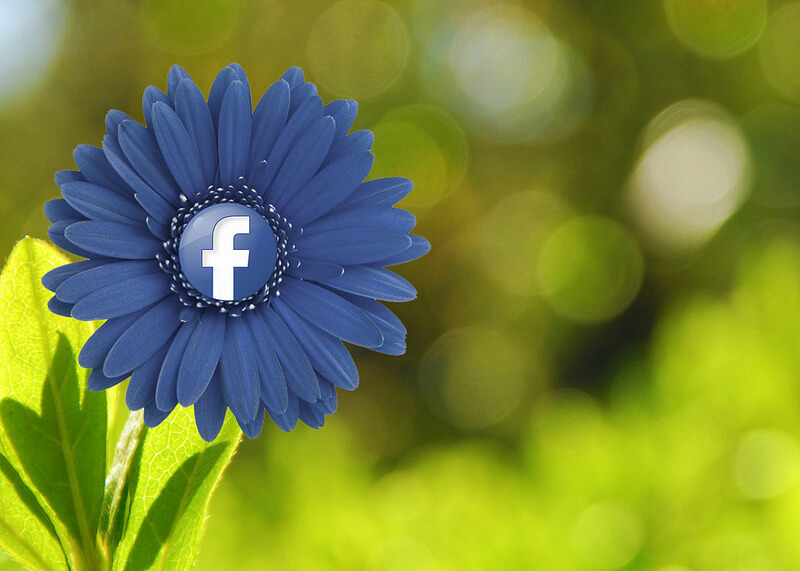 Facebook Flower by MKH Marketing
