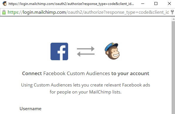 Facebook Ads Create Custom Audience By Importing Customer List MailChimp