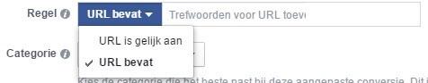Facebook Ads Pixel Conversion Set Rule URL