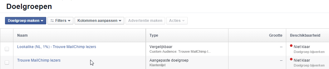 Facebook Ads target audience overview
