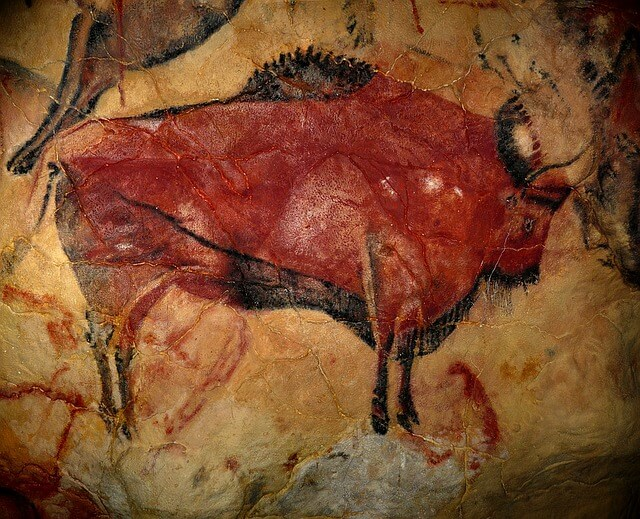 Prehistorisch Facebook - bison-1171794_640