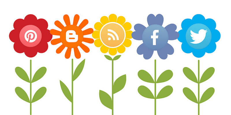 Social media is growing: more and more different social media are being added