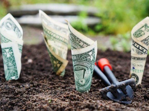 Investing in innovation
