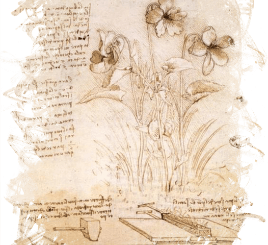 werk van Leonardo da Vinci